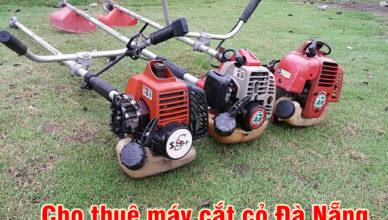 Cho thuê máy cắt cỏ Đà Nẵng